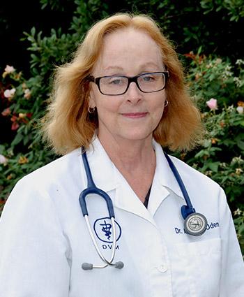 Dr. Amanda Oden